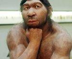 neanderthal2-278x225.jpg