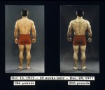 pm_back_comparison.jpg