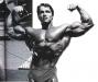 Arnold-Schwarzenegger-3